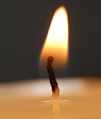 candela-sego