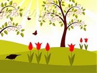 uccellino-tulipano