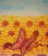 farfalla-falena