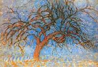 due-alberi