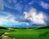 cavallo-magico
