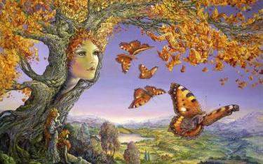 fiammifero-farfalla