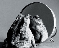 specchio-coro-rane