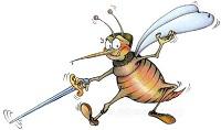 zanzara-ingorda