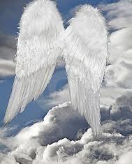 piuma-angelo