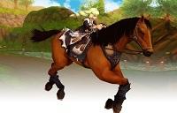 matrimonio-cavallo