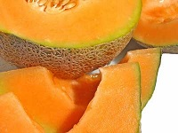 celestino-mingherlino-albero-meloni