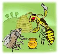 calabroni-api
