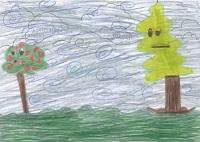 cedro-ermanno