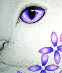 gala-gattina-bianca