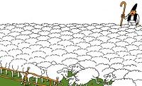pastore-cento-pecore-lis