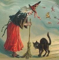 strega-rospo-gatto