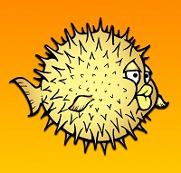 gino-pesce-palla