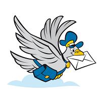 piccione-viaggiatore-inciampo-piadina-riccione
