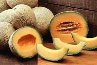 ricerca-melone