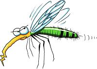 zanzara-canterina