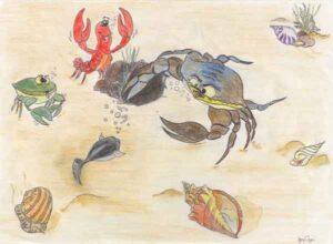 pesciolino-nero-6